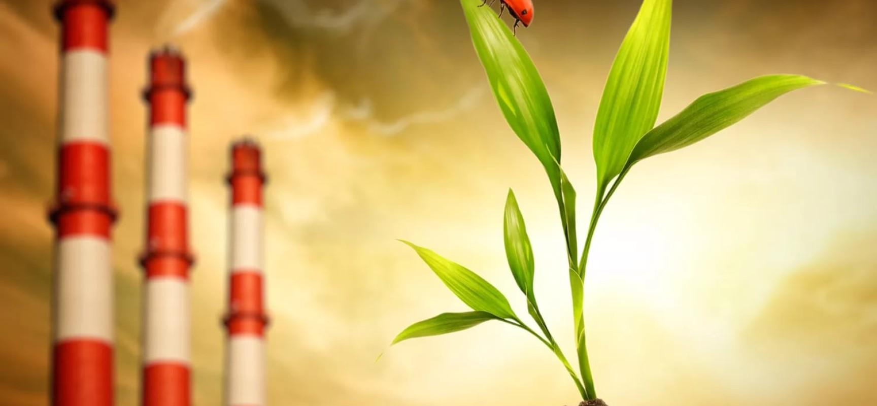 Дисциплинарная ответственность за экологические правонарушения