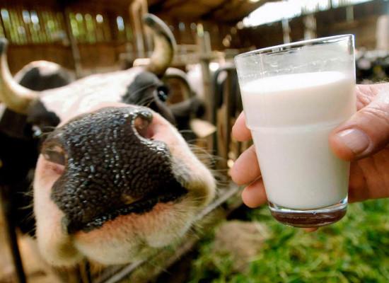Выдача молока как одна из компенсаций за вредные условия труда